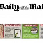 daily mail - 4 january 2010_norainlogo